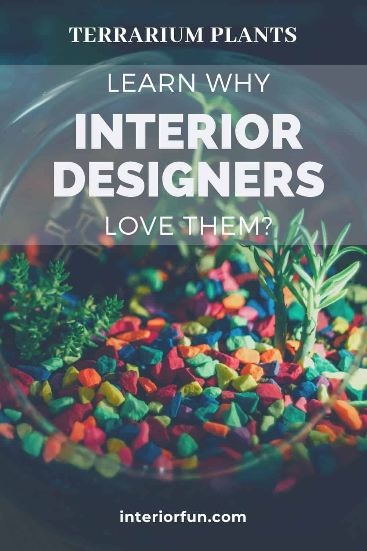 Learn why interior designers love to use terrarium plants for home decor. #indoorplant #terrarium #plants #homedesign #homedecor
