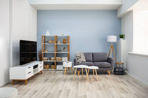 Sky Blue Accent Wall in Living Room